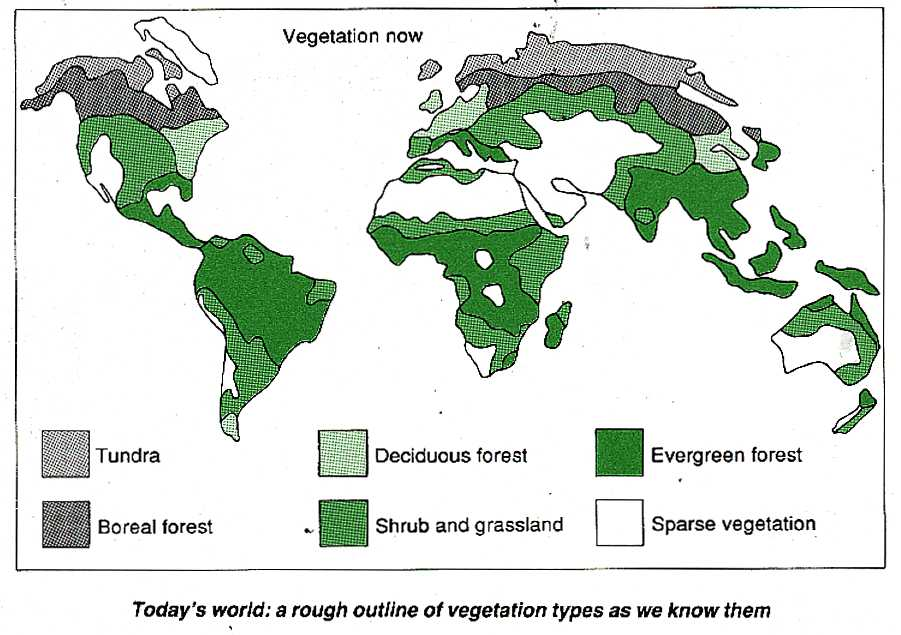 Vegetation types, 1989