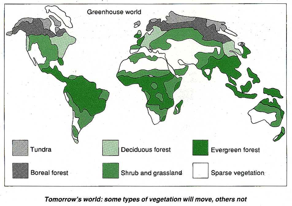 Future vegetation types