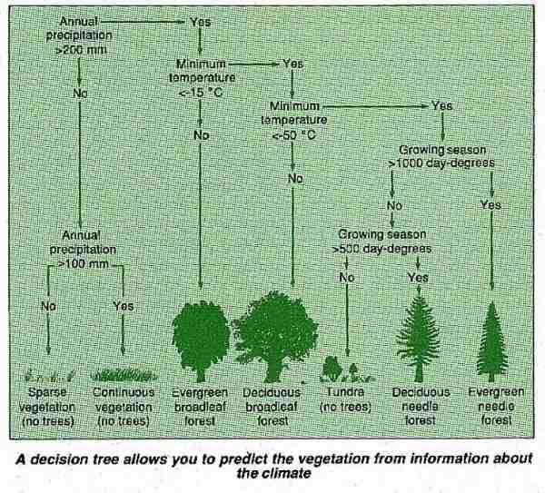 Predicting vegetation levels