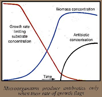 Microorganisus and antibiotics