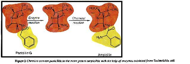 Conversion of penicillin to compicillin