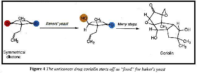 Structure of anticancer drug coriolin