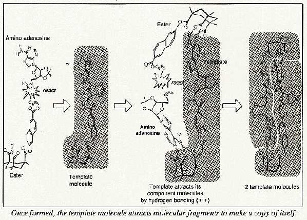 Artificial molecule, AATE