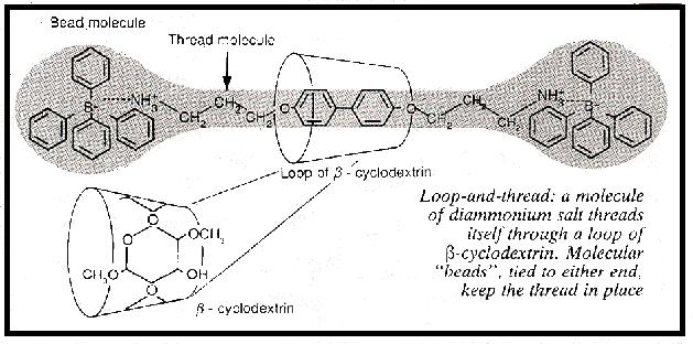 Loop and thread molecules