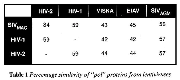 Percentage similarity of pol proteins