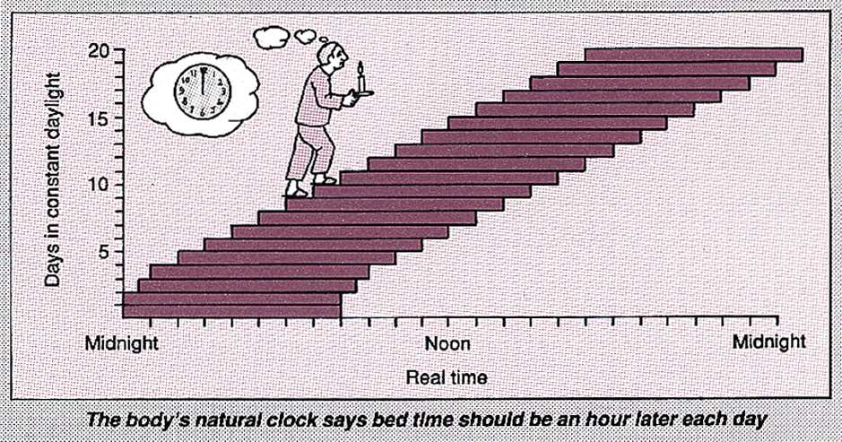 Natural clock and bed times