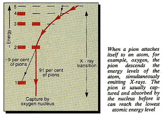 Effect of pion on an oxygen atom