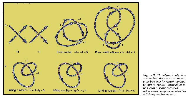 How to classify a knot