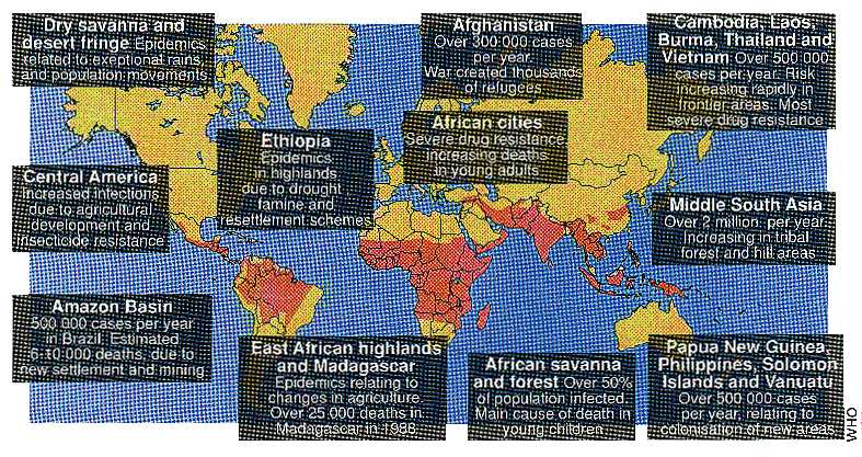 Malaria map of the world