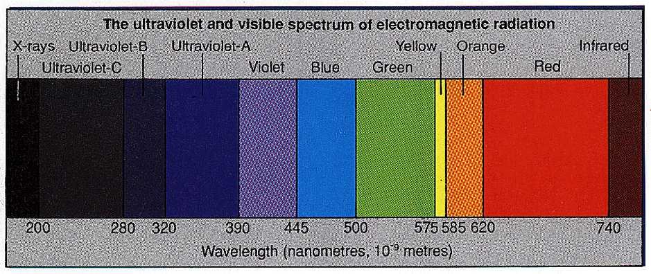Electromagnetic radiation spectrum