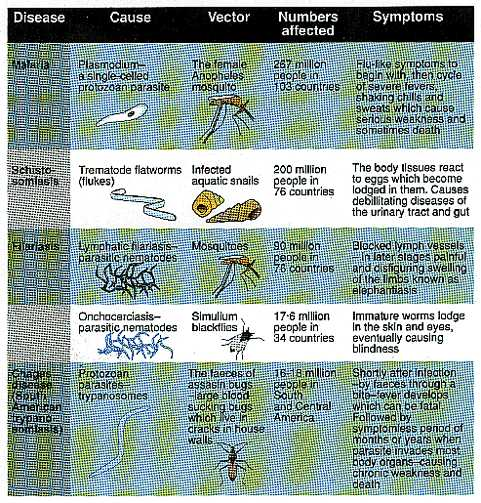 Types of tropical diseases