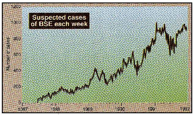 Suspected Cases of BSE Each Week