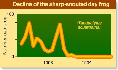 Decline of sharp-snouted day frog