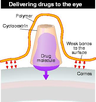 Direct delivery of drugs to the eye
