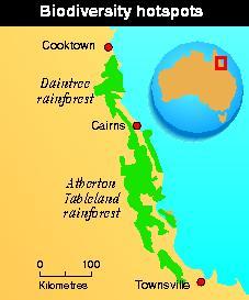 Biodiversity within Queensland's rainforests