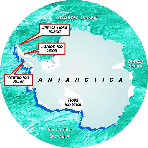 Ice shelves in Antarctica