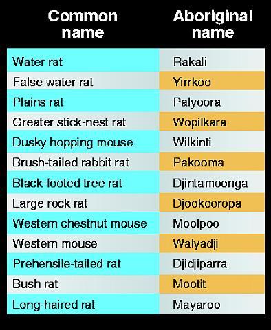 Aboriginal names for rats & mice