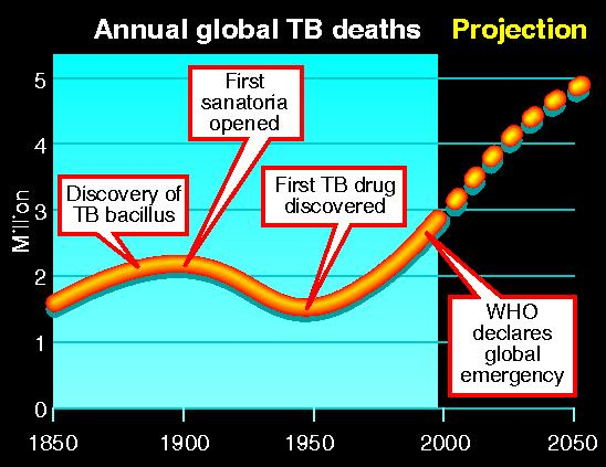 Annual global deaths from TB