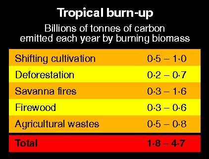 Tropical carbon emissions