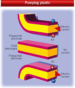 Artificial muscle from polymer films