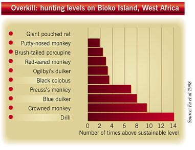 Hunting levels on Bioko Island, West Africa