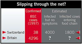 Numbers of healthy cows that may be infected with BSE
