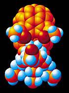 World Cup molecule