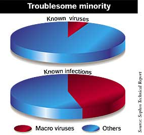 Known infections caused by macro viruses