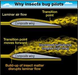 Why insect matter affects wing efficiency