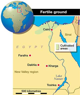 Diverting Nile water to cultivate desert in Egypt