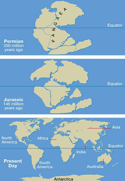 Last word: Origins of the Earths continents