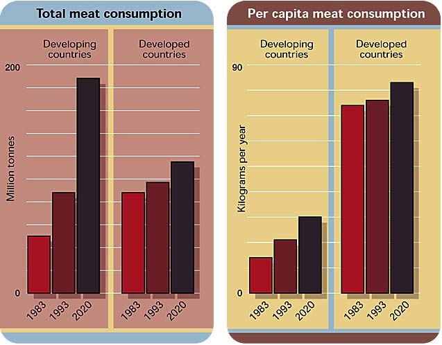 Rise in world meat consumption