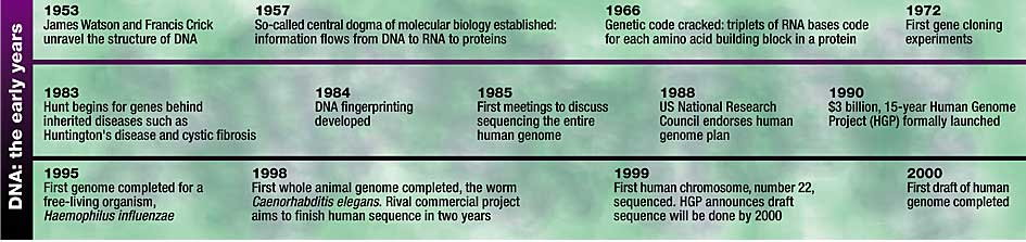 Time line of research into DNA