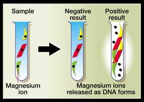 Diagnosing sickness by gene testing