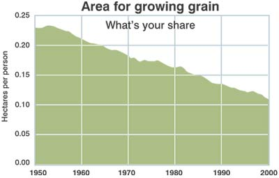 Area for growing grain