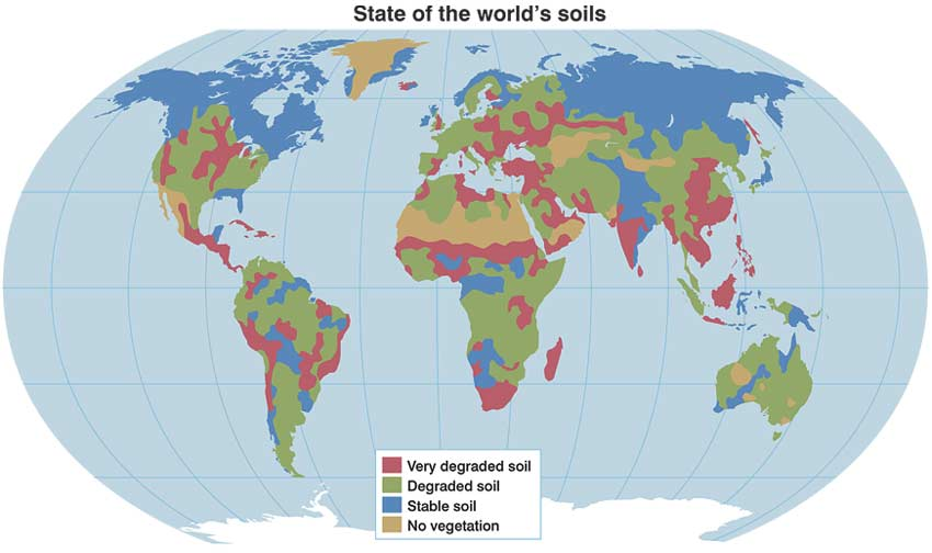 State of the world's soils