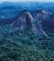 Aerial view of Tumucumaque mountains(Photo: Kitt Nascimento/WWF-Brazil)