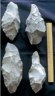 Limestone tools were used for butchering and cutting wood