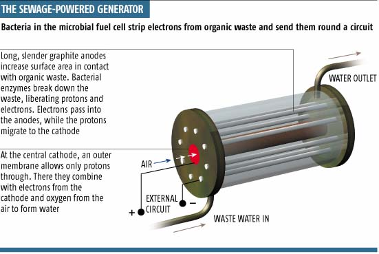 The sewage-powered generator