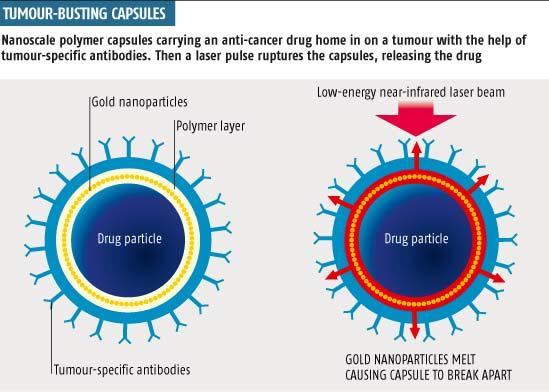 Tumour-busting capsules