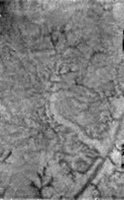 Dark channels on Titan's surface may have been formed by