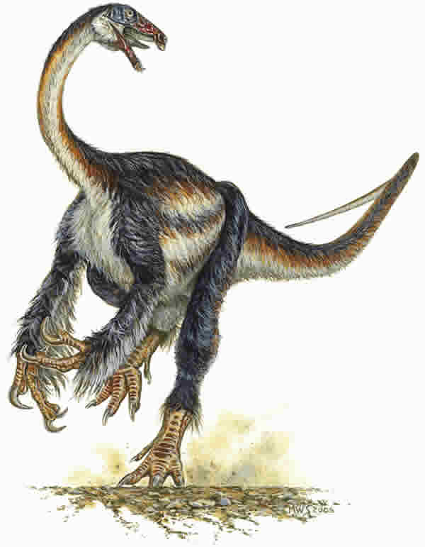 The feathered dinosaur may represent a missing link between earlier meat-eaters and later plant-eaters