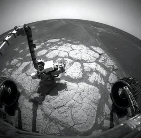 Opportunity has reached its first oasis of bedrock after five months of roving along the troughs of sand dunes