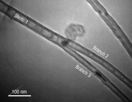 A catalyst was used to make a Y-shaped nanotube structure, creating a self-contained transistor