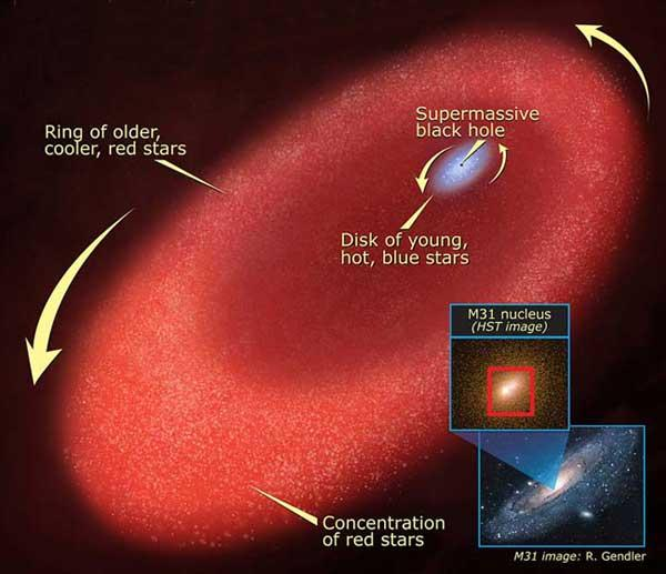 The disc of young, hot, blue stars swirls around a supermassive black hole and is nested inside a ring of older, cooler, red stars. The inset images show M31's bright core and a view of the entire galaxy (Figure: NASA, ESA, A Field/STScI)