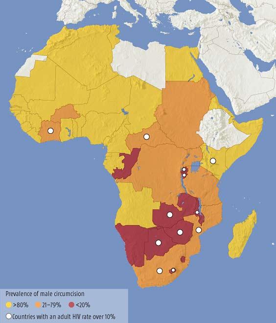Circumcision reduces risk of HIV