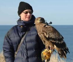Louise Crandal and her eagle, called, Cossack are helping biologists understand the way birds move in free flight