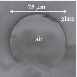 The glass tube used to create the laser (shown in cross-section) is coated with quantum dots