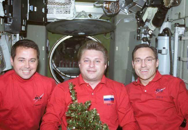 Dan Bursch, Yuri Onufrienko and Carl Walz pose with their Christmas tree aboard the International Space Station in 2001
