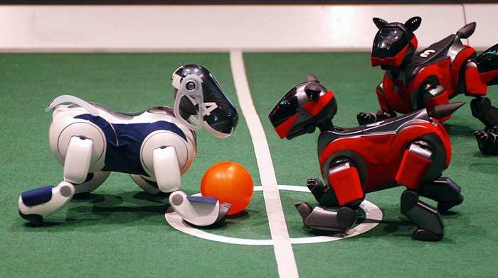 Robot dogs will battle for world soccer supremacy